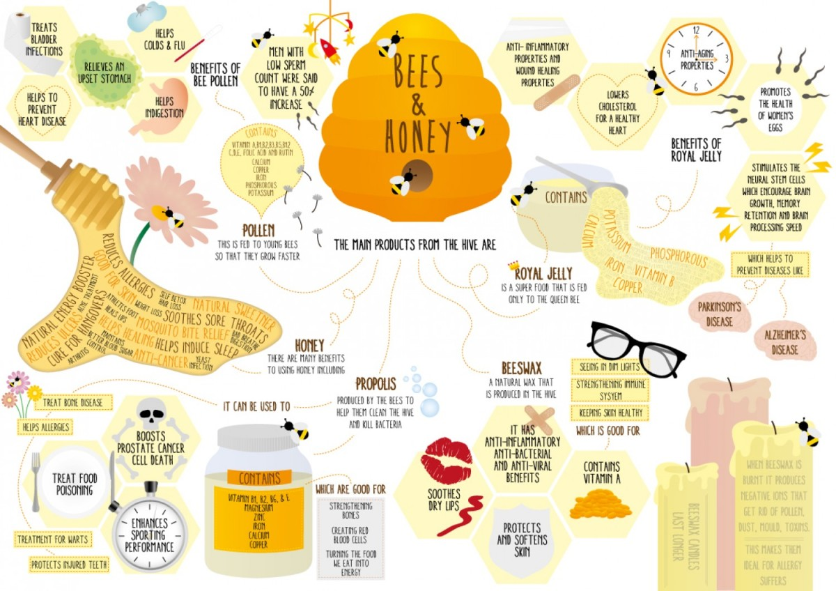 All About Honey: The Natural Elixir